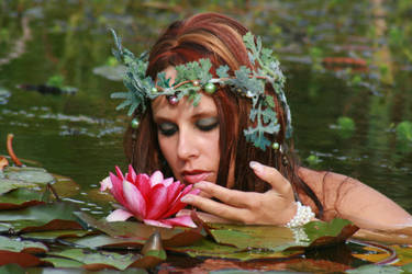 Water Lilies 59 by MarjoleinART-Stock