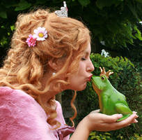 The Frog Prince 71 by MarjoleinART-Stock