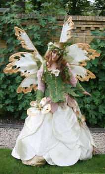 Flower Queen 35