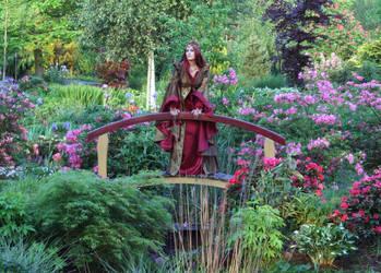 Garden Shoot 13 by MarjoleinART-Stock