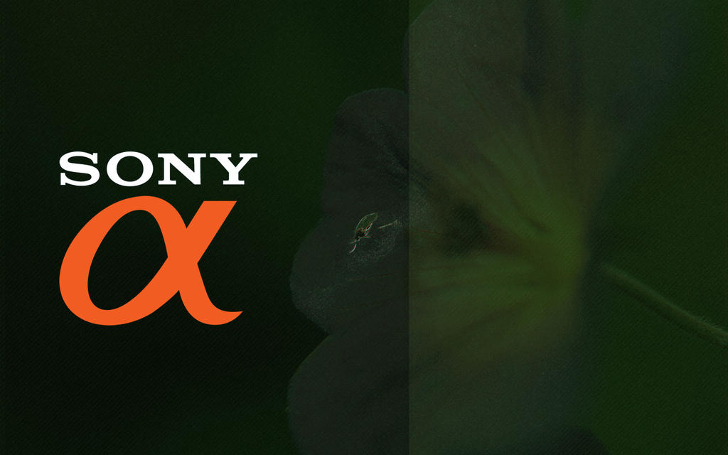Sony Alpha Wallpaper By Flilot