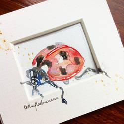Ladybird illustration