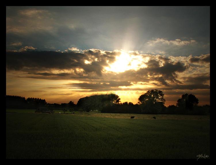 Sunscape II by thomasdelonge