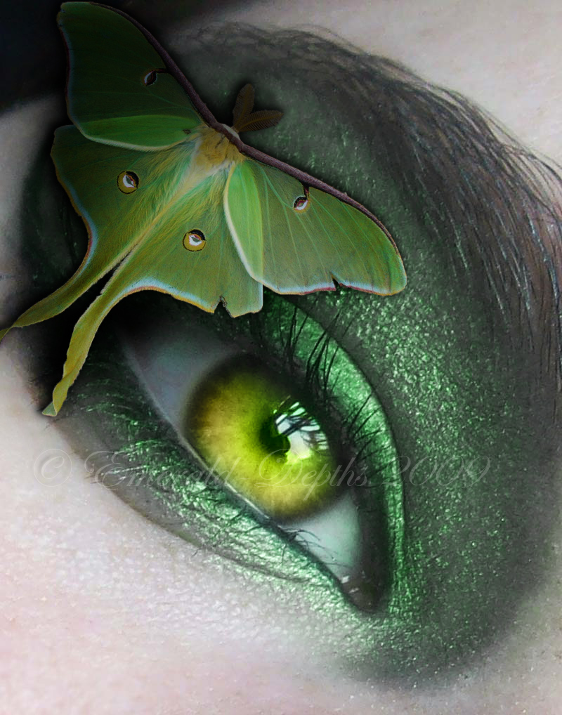 luna moth and green eye inspirational photos of art. Black Bedroom Furniture Sets. Home Design Ideas