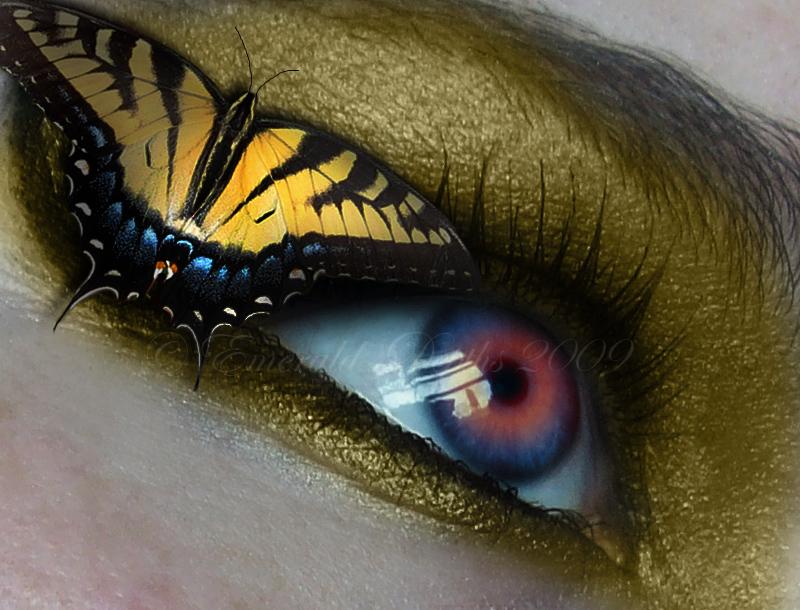 Tiger Swallowtail by Emerald Depths - G�z Avatarlar�,G�zl� Avatarlar
