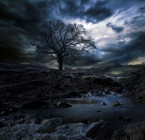 Barren by Emerald-Depths