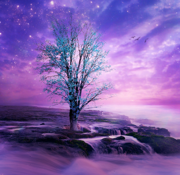 Where Dreams Flourish by Emerald-Depths