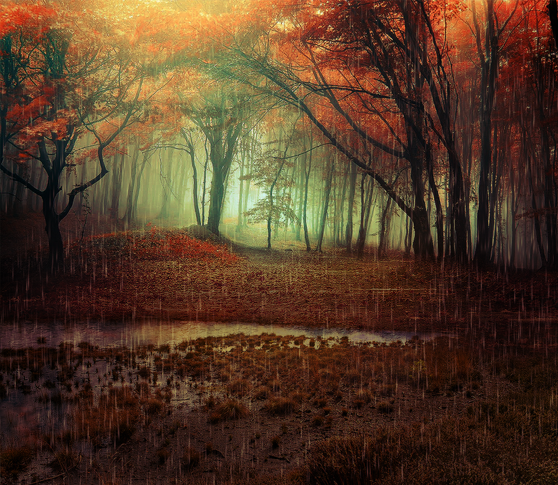 November Rain by Emerald-Depths