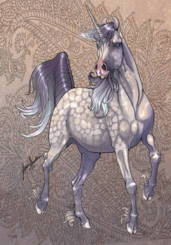 Marwari Unicorn