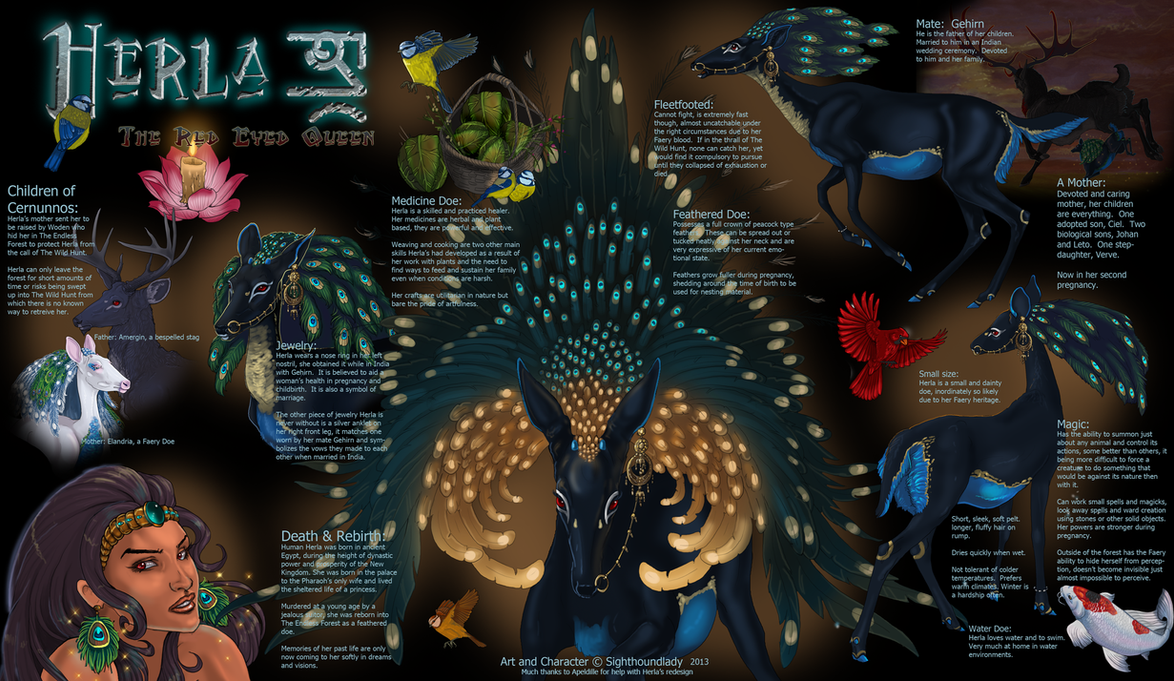 Herla Reference Sheet 2013 by sighthoundlady