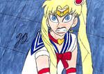 Sailor Moon Redraw Challenge by TheZackBurg