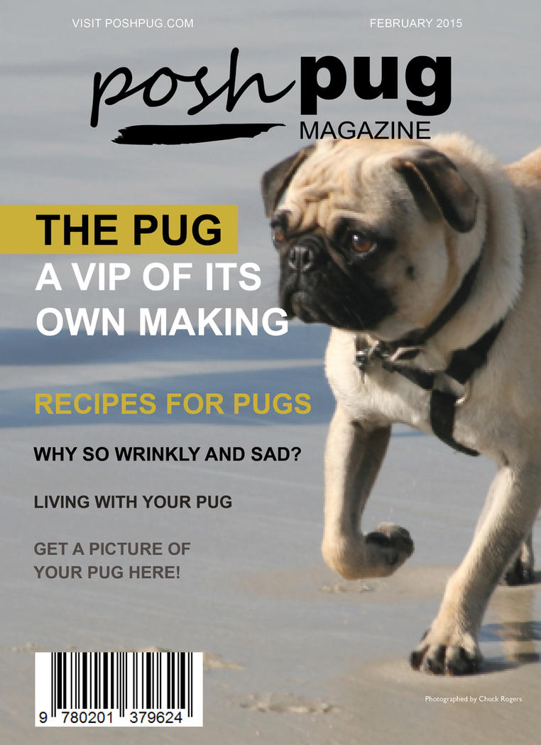 Posh Pug Magazine Cover by denzel94