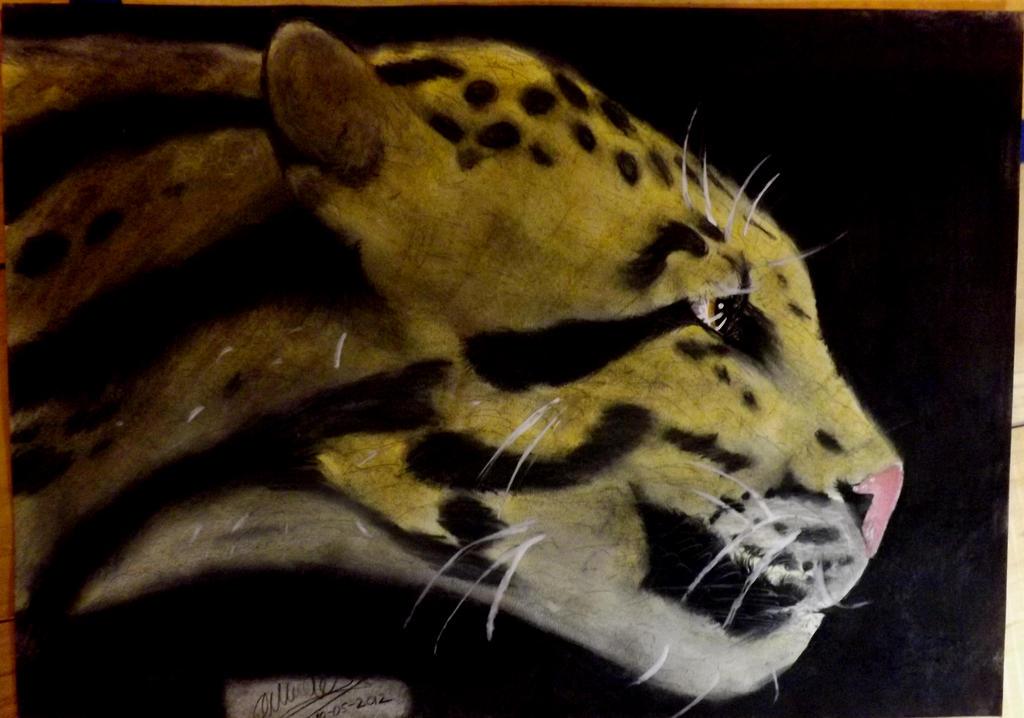Leopard by odin3000