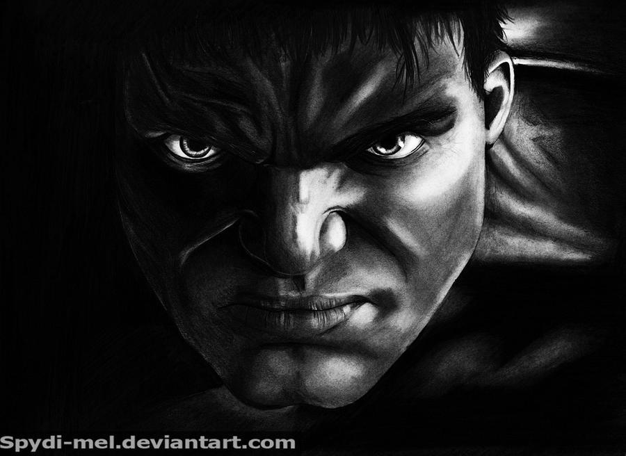 The Hulk by Spydi-mel
