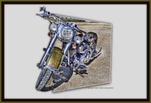 BikerChic08's Profile Picture