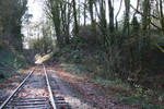 Trees, Tracks, Tunnel by hyannah77-stock