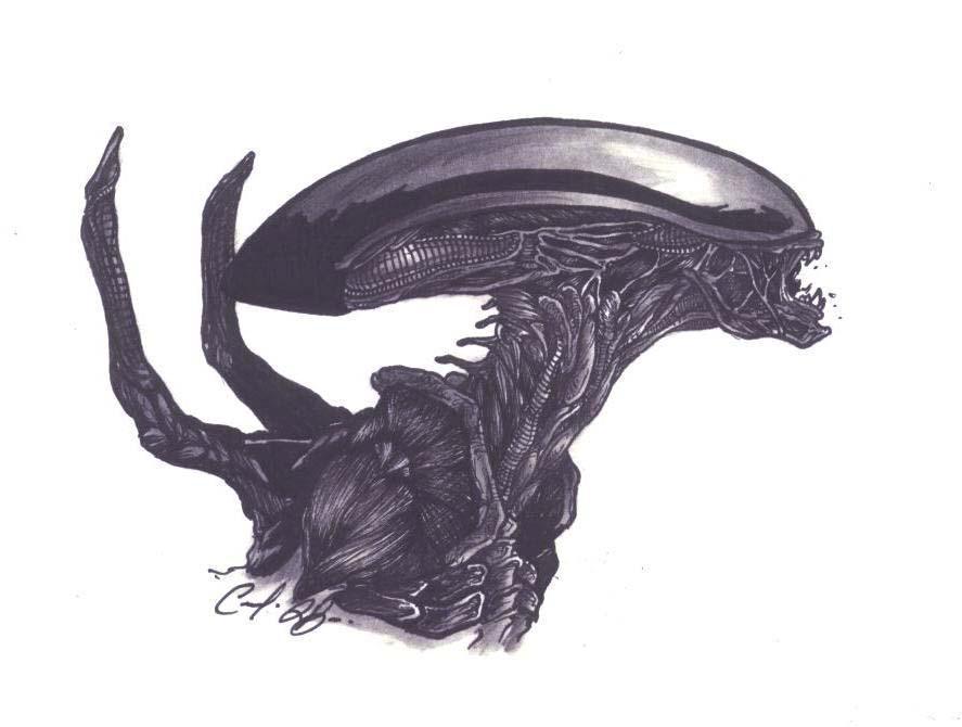Alien Head Drawing Alien Head by Sariel367