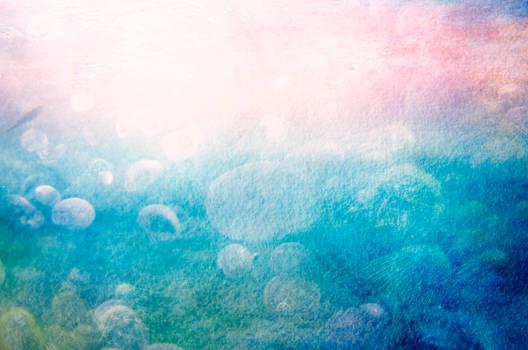Phatpuppy Jellyfish Fields
