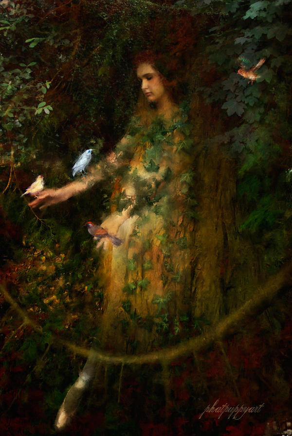 IMAGES TO NOURISH THE SPIRIT AND TOUCH THE HEART - Page 14 Bird_Lady_by_phatpuppy