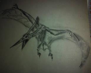 pterodactyl by bialng