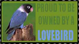 Owned By A Lovebird STAMP by southernstingray