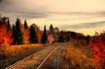 HDR Autumn Tracks
