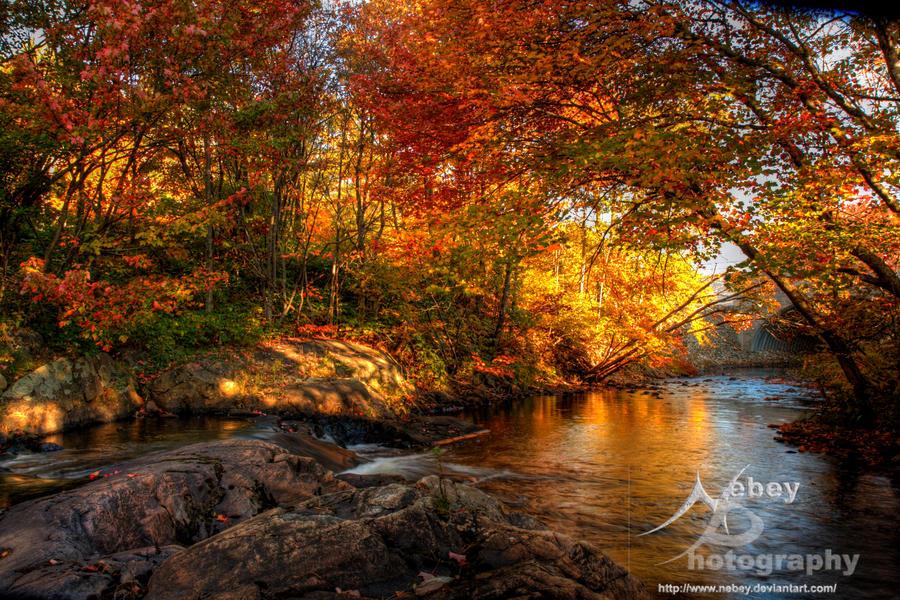 10 от най добрите hdr есенни фотографии в