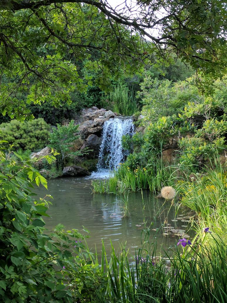 Waterfall, Red Butte Garden by PamplemousseCeil