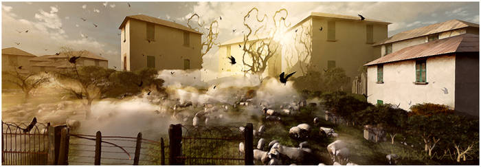 Sheep by EhsanA