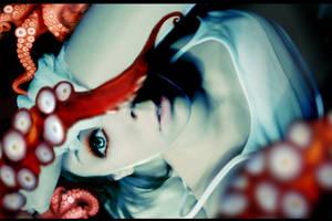 octopus by Mersi