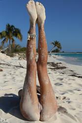 Beach Palm by blooddee