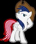 American Pony