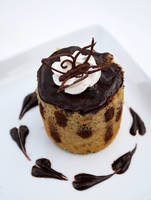 Vanilla Spongecake Study 5 by laurenjacob