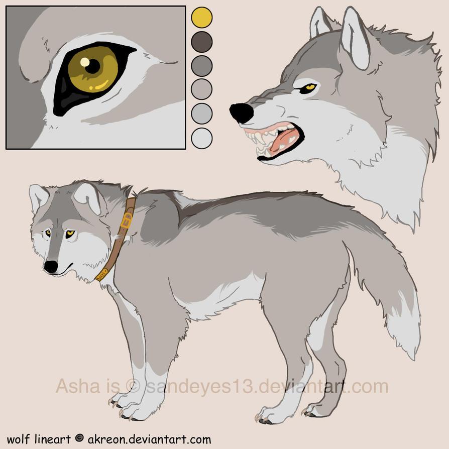Asha Reference by sandeyes13