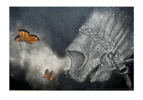 Breathing Butterflies by sandeyes13