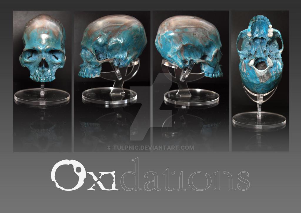 Oxidations, bronze skull by Tulpnic