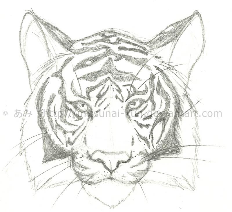 Easy tiger head drawings easy tiger head drawings photo1 publicscrutiny Images