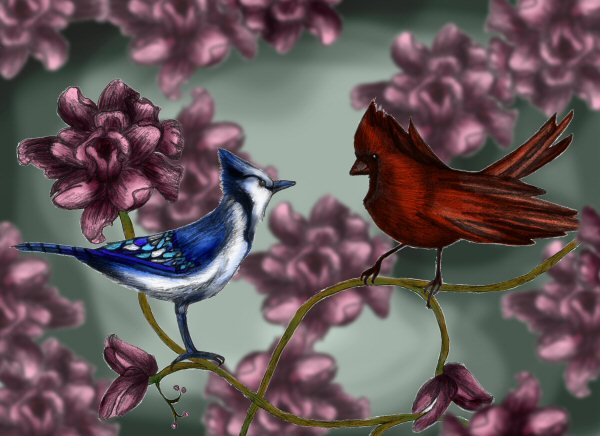 My two favorite birds by Ambsu