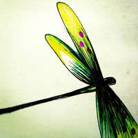 Dragonfly::. by nandiamond