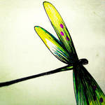 Dragonfly::.