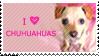 Chihuahua Stamp by nandiamond