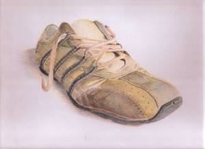 Media Tinta Color - Zapato