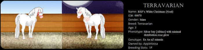 RSF's White Christmas by appieloosa
