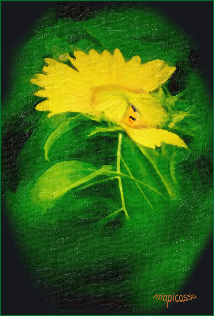 shy sunflower ver 943 by miapicassa