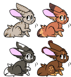 Rabbit Adopts 1/4 open