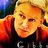 Jethro Gibbs 2
