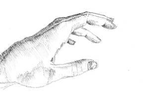 Hand Study IV by NezumiWorks