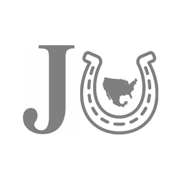 Ssbu Jojo Steel Ball Run Series Icon By Spyro2108 On Deviantart