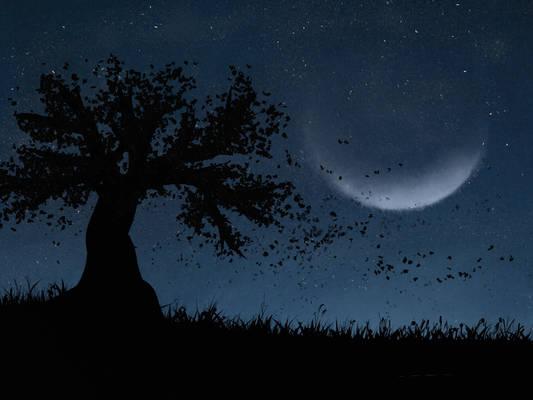 Nachtwind