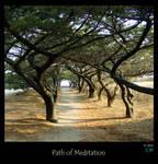 Path of Meditation